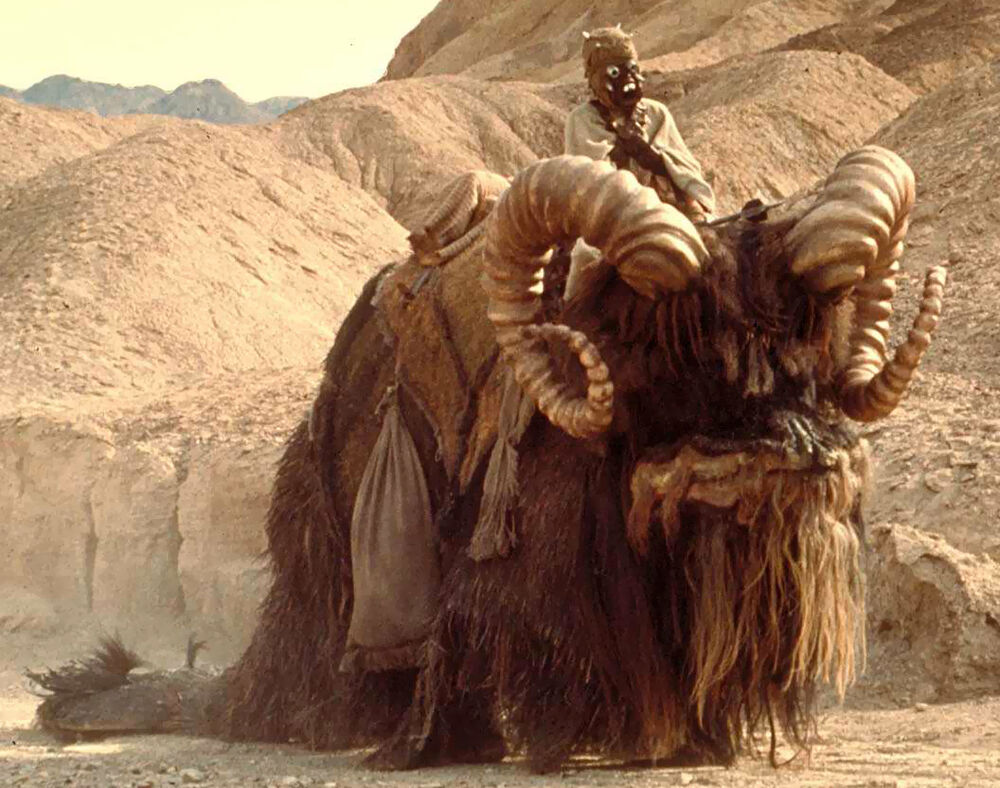 Obi Wan Kenobi Bantha